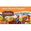 SWEET HARVEST PUMPKIN